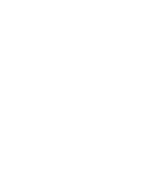 Stickers palmier autocollants stickers for Palmier d exterieur resistant au froid
