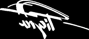 Sticker Opel Tigra