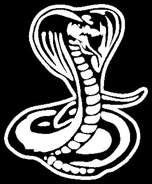 serpent1 - Serpents