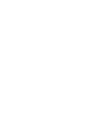 viking - Indiens - Pirates