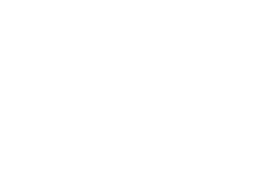 TORTUE - Divers Animaux
