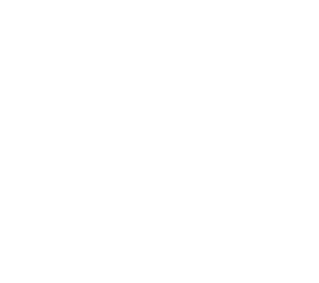 tete de mort vache