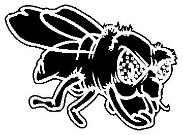 mouche - Divers Animaux