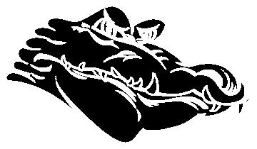 crocrodile - Divers Animaux