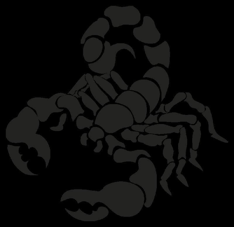 Sticker Signe Du Zodiaque Scorpion Autocollants Stickers
