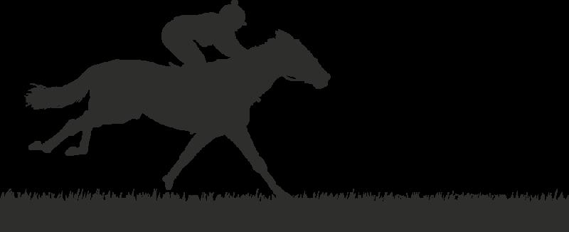 Sticker cheval course autocollants stickers - Dessin cheval de course ...